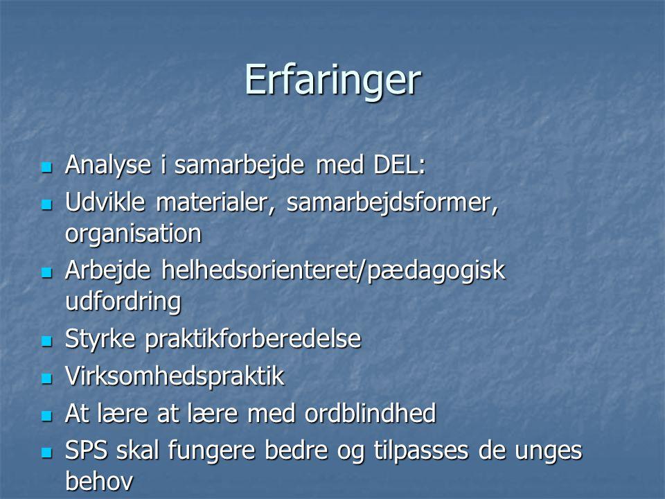 Erfaringer Analyse i samarbejde med DEL: