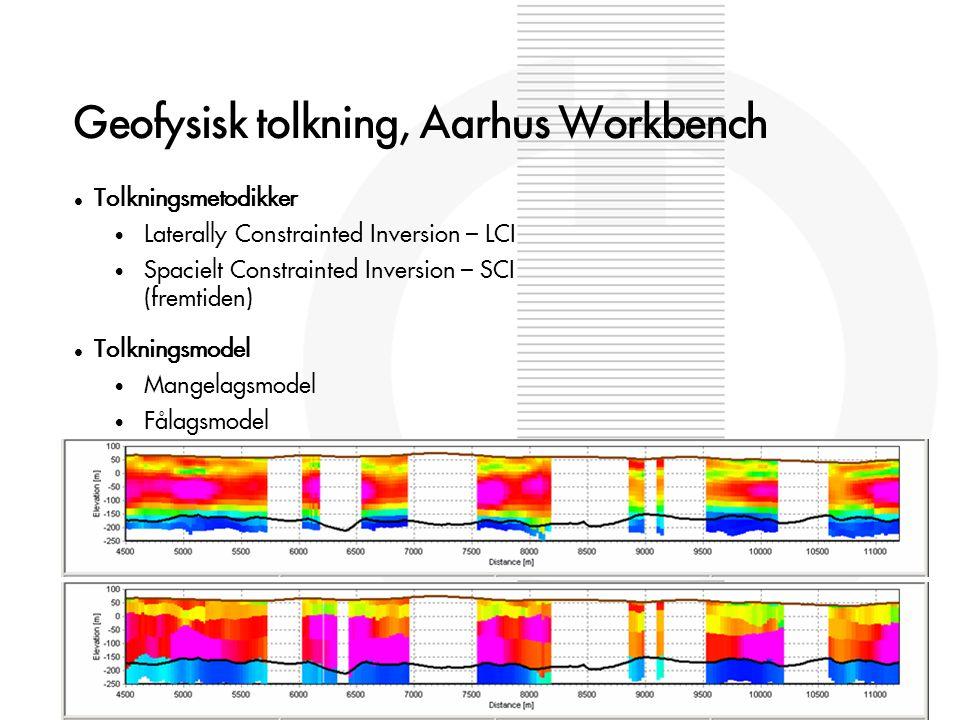Geofysisk tolkning, Aarhus Workbench