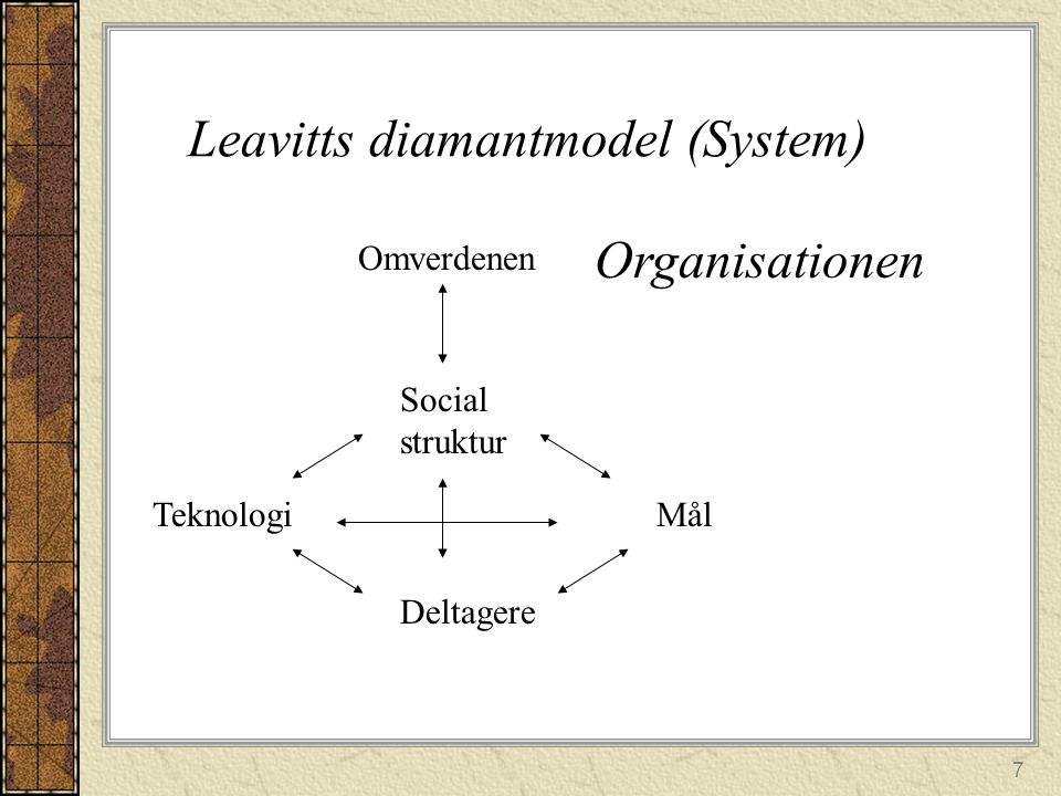 Leavitts diamantmodel (System)