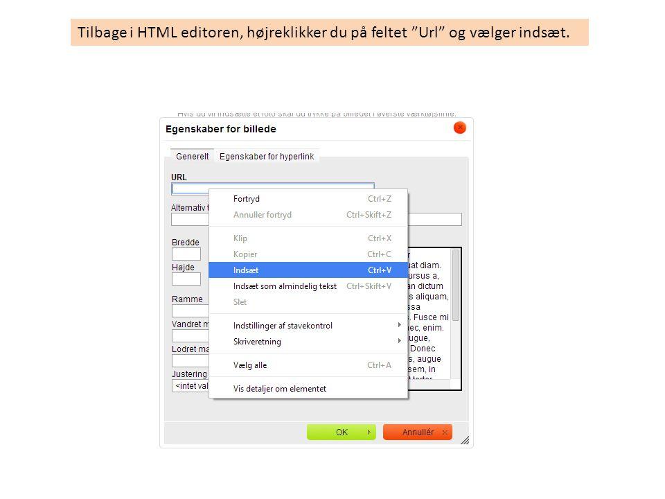 Tilbage i HTML editoren, højreklikker du på feltet Url og vælger indsæt.