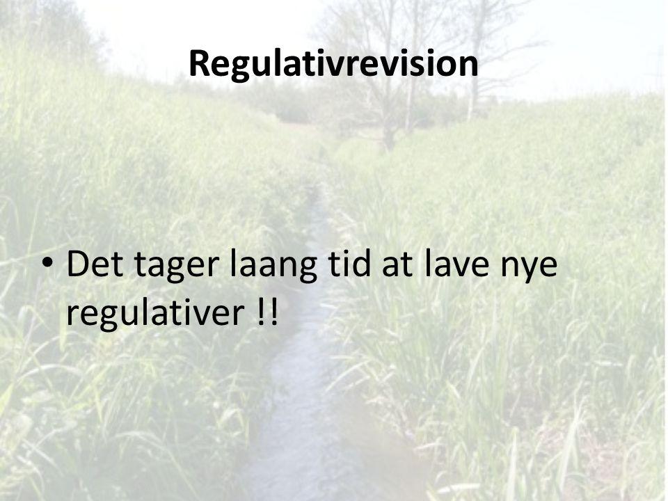 Regulativrevision Det tager laang tid at lave nye regulativer !!