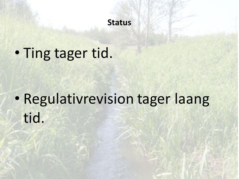 Regulativrevision tager laang tid.