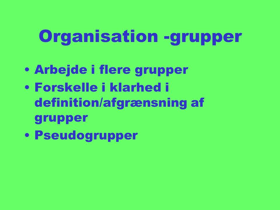 Organisation -grupper