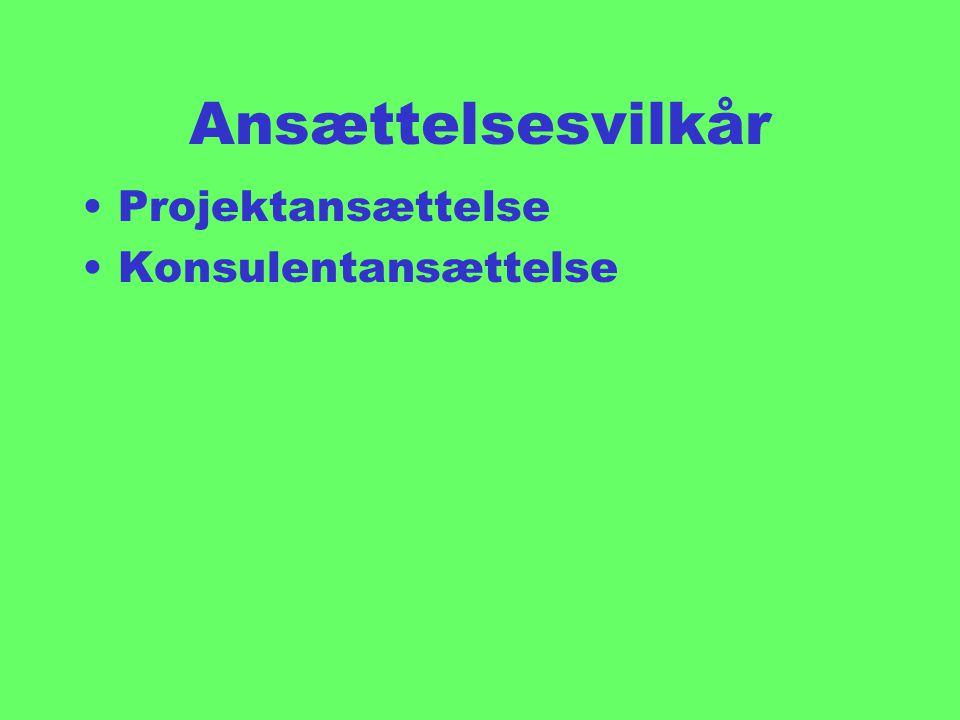 Ansættelsesvilkår Projektansættelse Konsulentansættelse