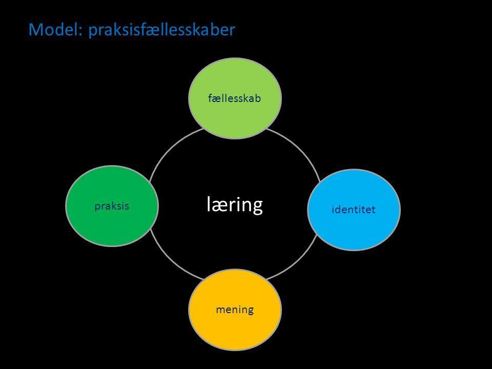 Model: praksisfællesskaber