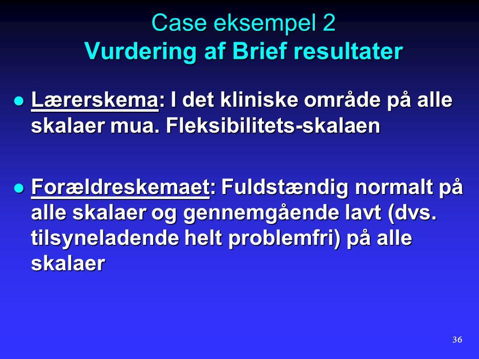 Case eksempel 2 Vurdering af Brief resultater