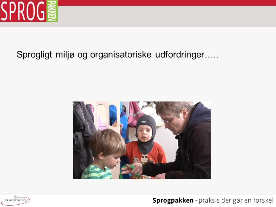 Sprogligt miljø og organisatoriske udfordringer…..