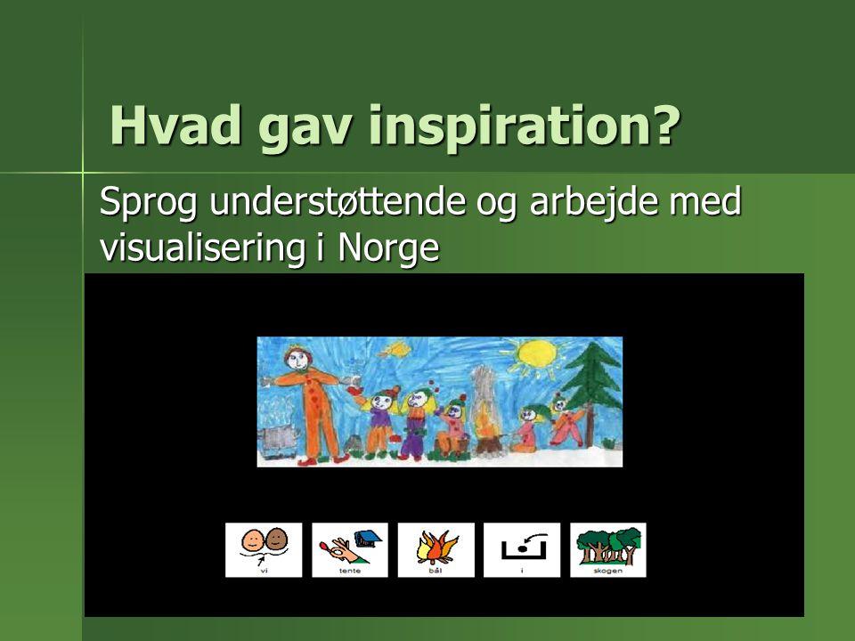 Sprog understøttende og arbejde med visualisering i Norge