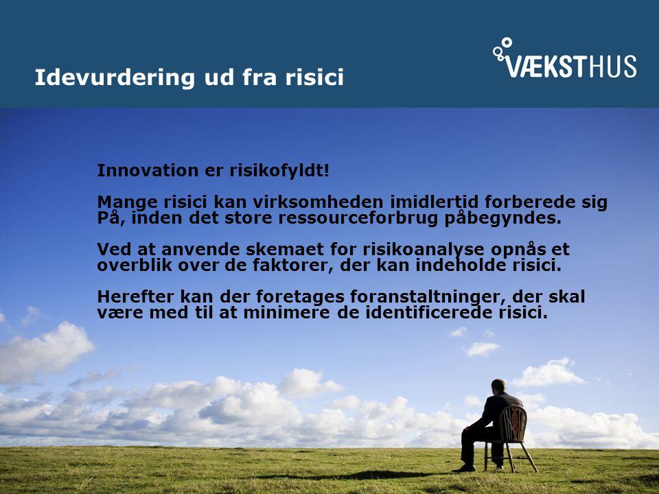 Idevurdering ud fra risici