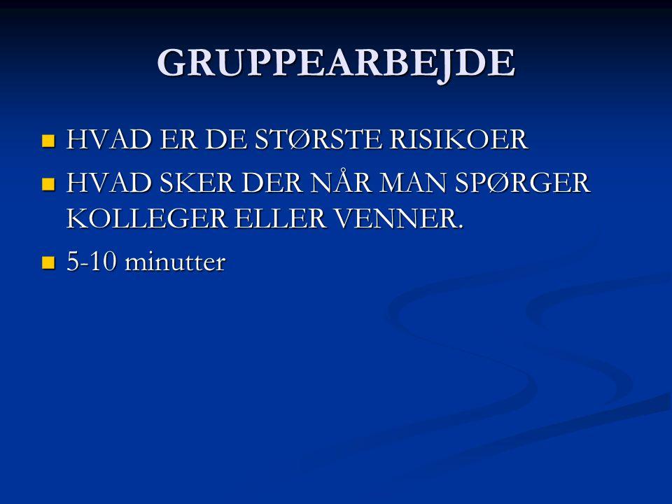 GRUPPEARBEJDE HVAD ER DE STØRSTE RISIKOER
