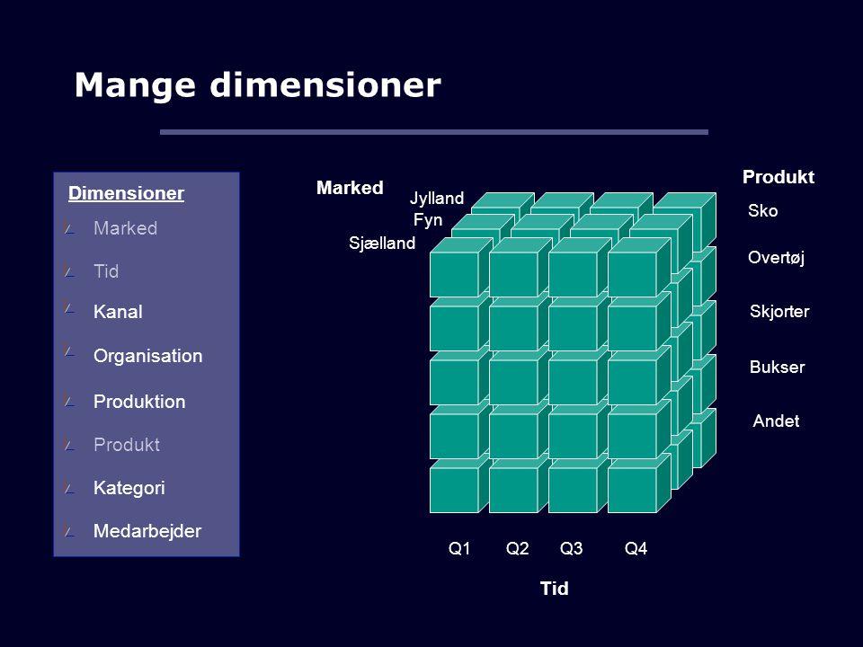 Mange dimensioner Produkt Marked Dimensioner Marked Tid Kanal