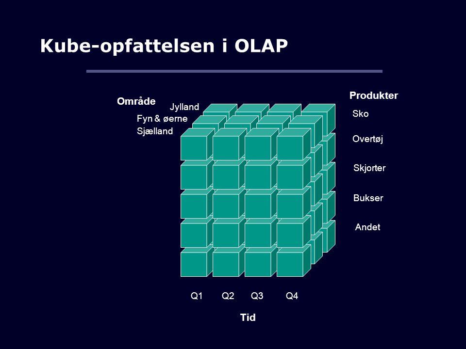 Kube-opfattelsen i OLAP