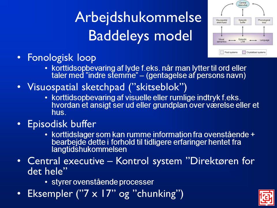 Arbejdshukommelse Baddeleys model