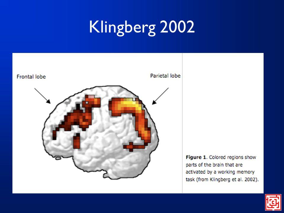 Klingberg 2002