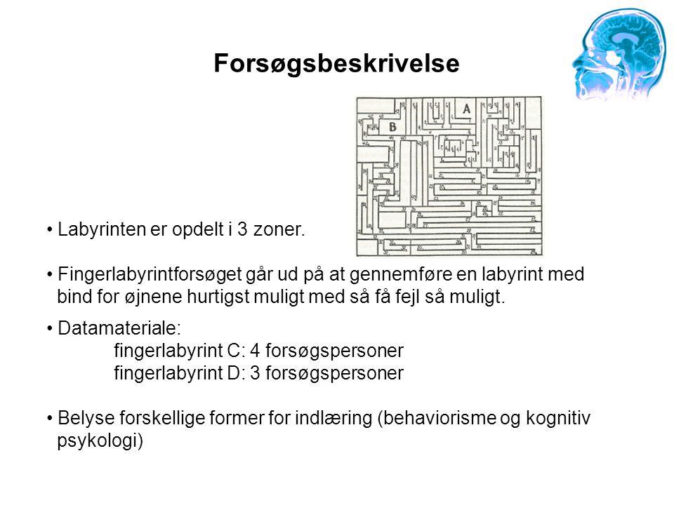 Forsøgsbeskrivelse Labyrinten er opdelt i 3 zoner.