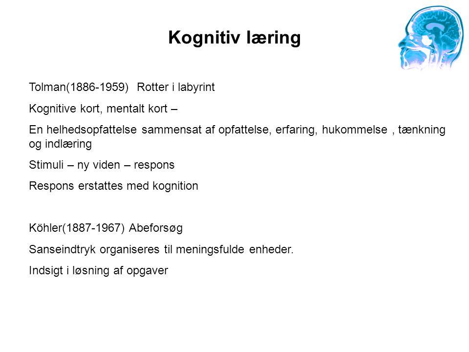 Kognitiv læring Tolman(1886-1959) Rotter i labyrint