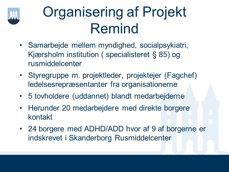 Organisering af Projekt Remind