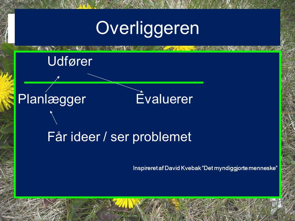 Overliggeren Udfører Planlægger Evaluerer Får ideer / ser problemet
