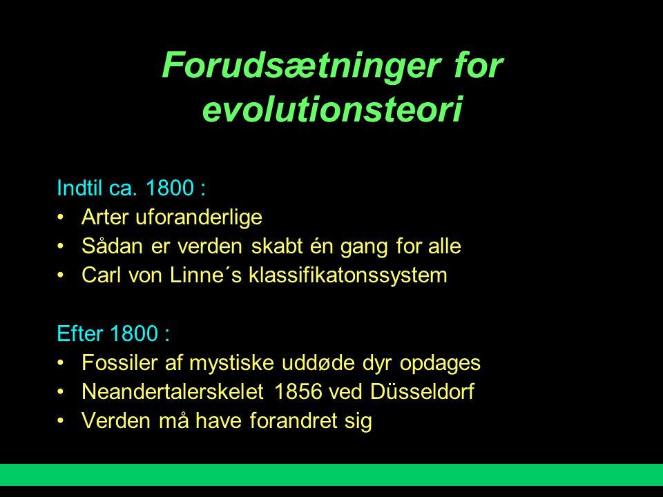Forudsætninger for evolutionsteori