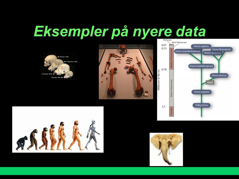 Eksempler på nyere data