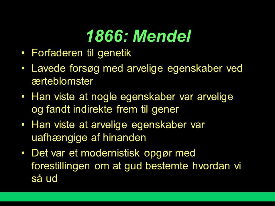 1866: Mendel Forfaderen til genetik