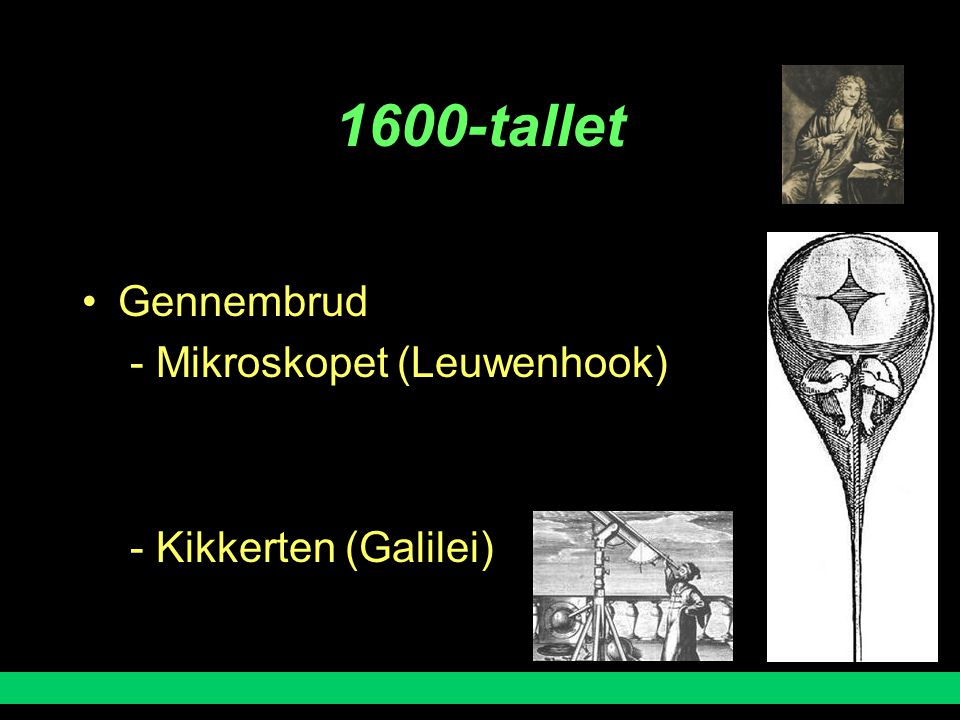 1600-tallet Gennembrud - Mikroskopet (Leuwenhook)