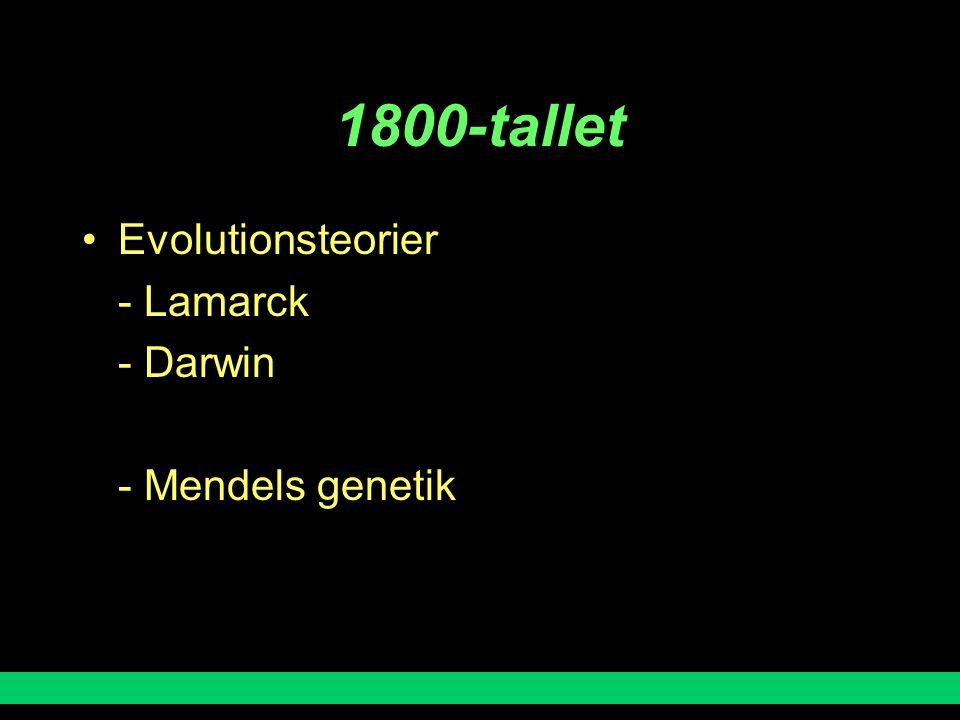 1800-tallet Evolutionsteorier - Lamarck - Darwin - Mendels genetik