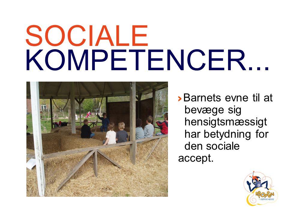 SOCIALE KOMPETENCER...