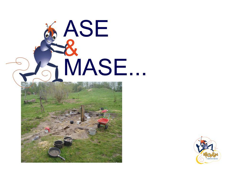 ASE & MASE...