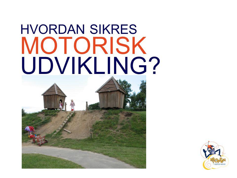 HVORDAN SIKRES MOTORISK UDVIKLING