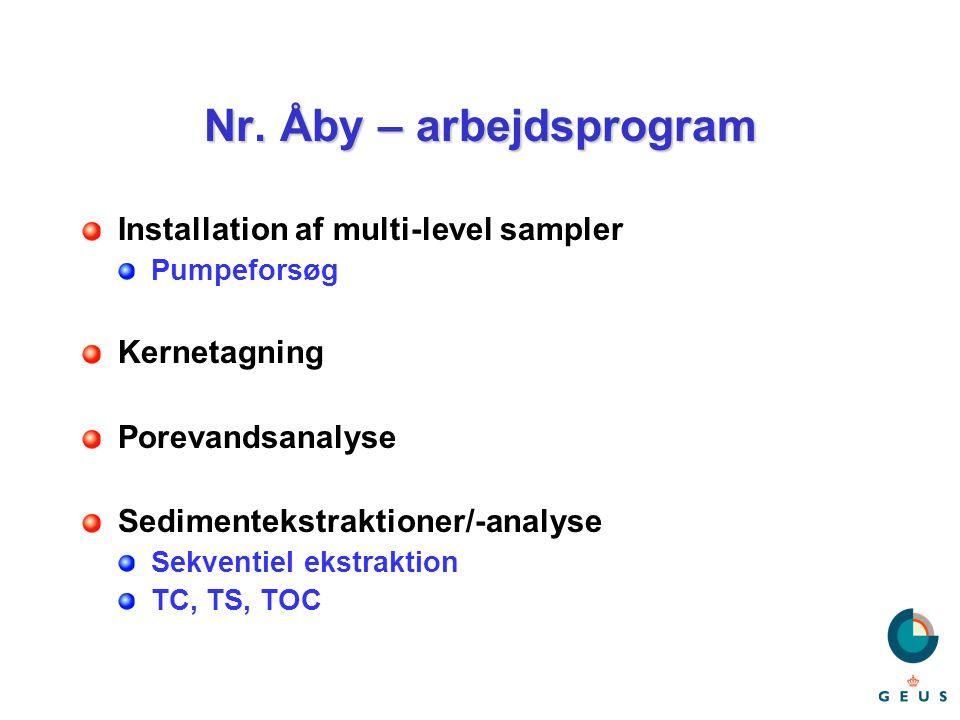 Nr. Åby – arbejdsprogram