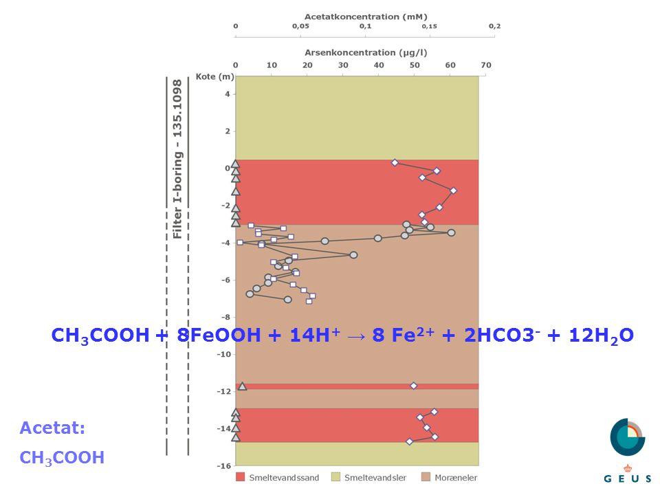 CH3COOH + 8FeOOH + 14H+ → 8 Fe2+ + 2HCO3- + 12H2O
