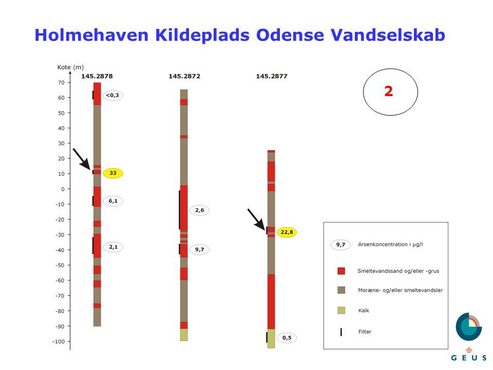 Holmehaven Kildeplads Odense Vandselskab