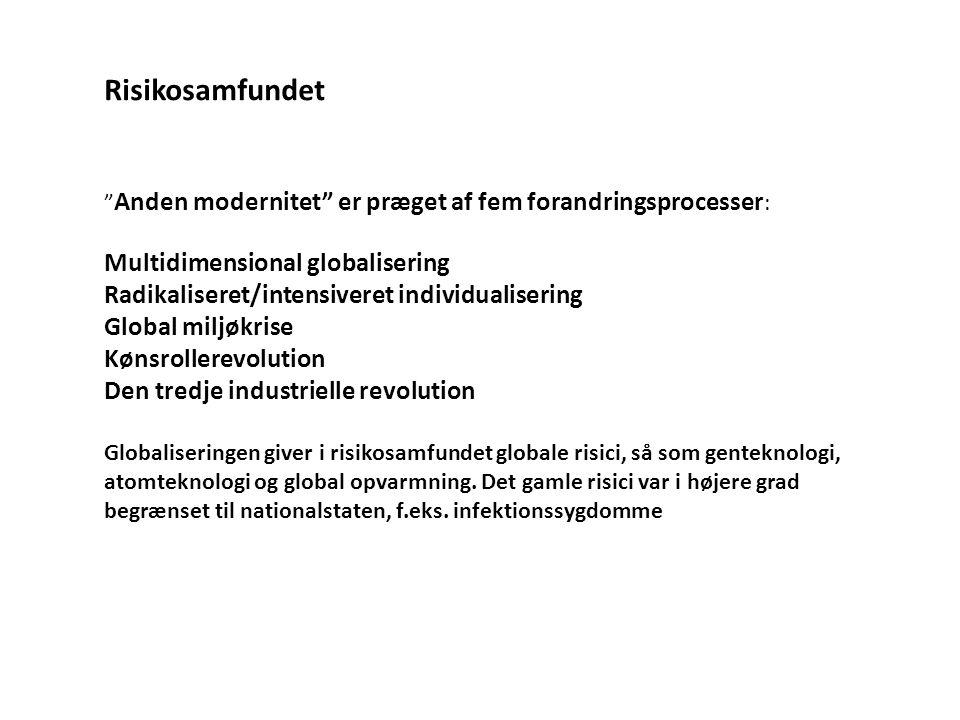 Risikosamfundet Multidimensional globalisering