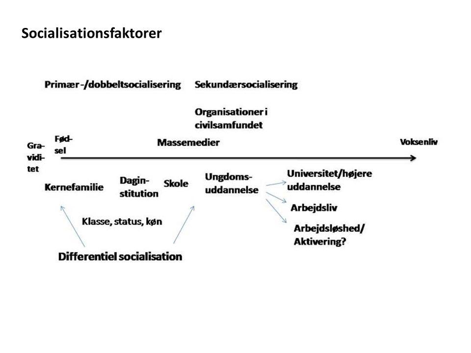 Socialisationsfaktorer