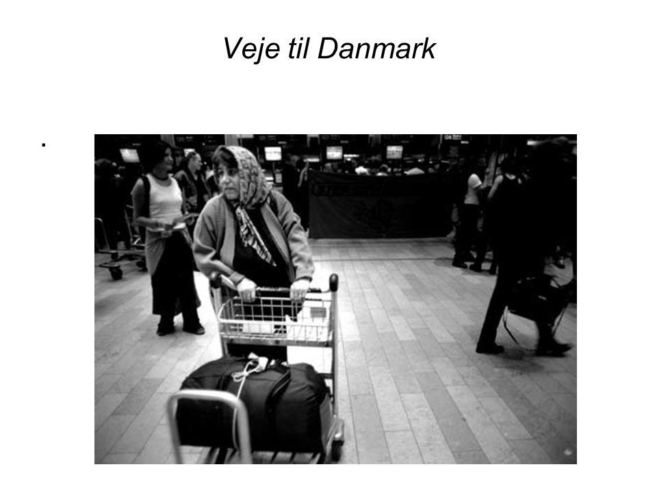 Veje til Danmark .