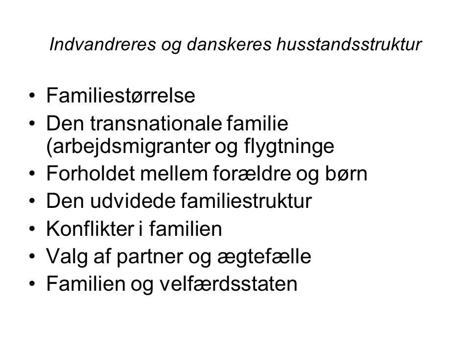 Indvandreres og danskeres husstandsstruktur