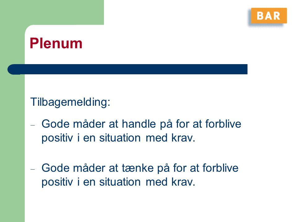 Plenum Tilbagemelding: