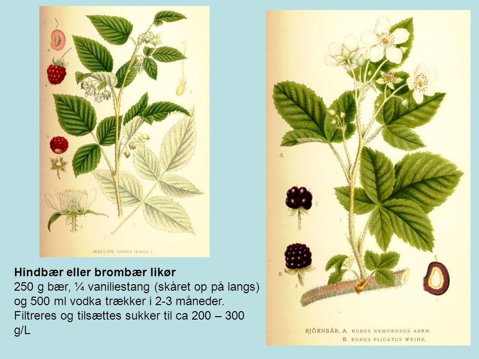 Hindbær eller brombær likør