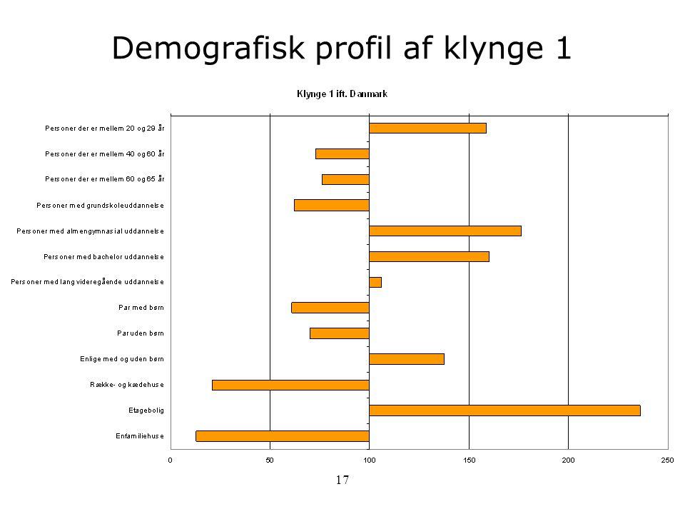 Demografisk profil af klynge 1