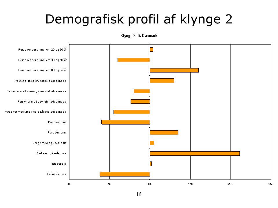 Demografisk profil af klynge 2