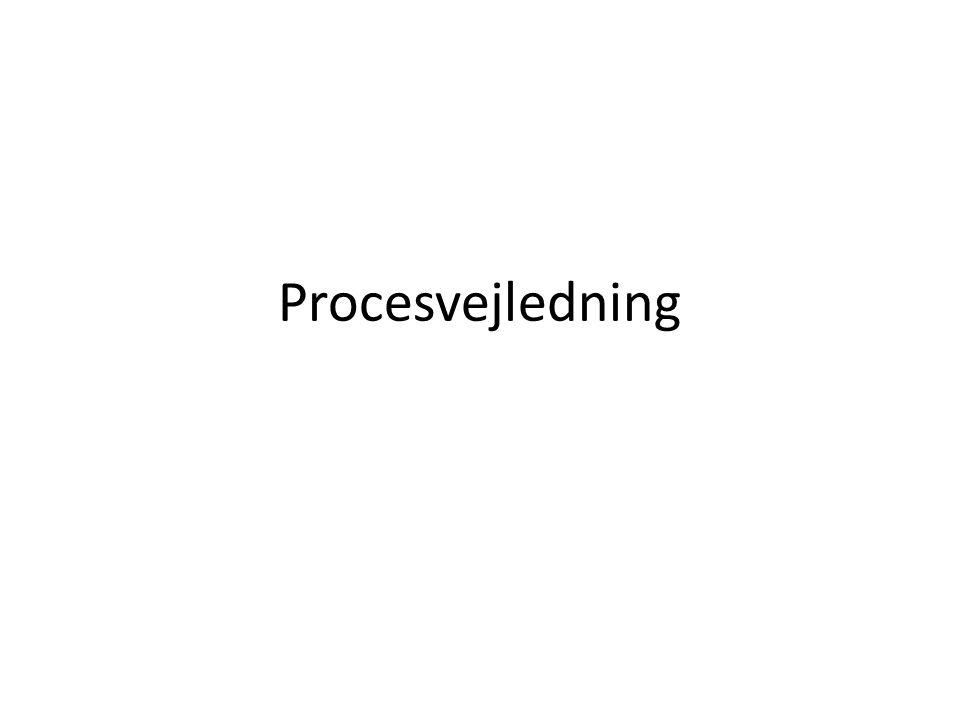 Procesvejledning