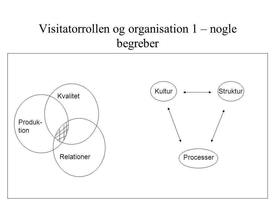Visitatorrollen og organisation 1 – nogle begreber