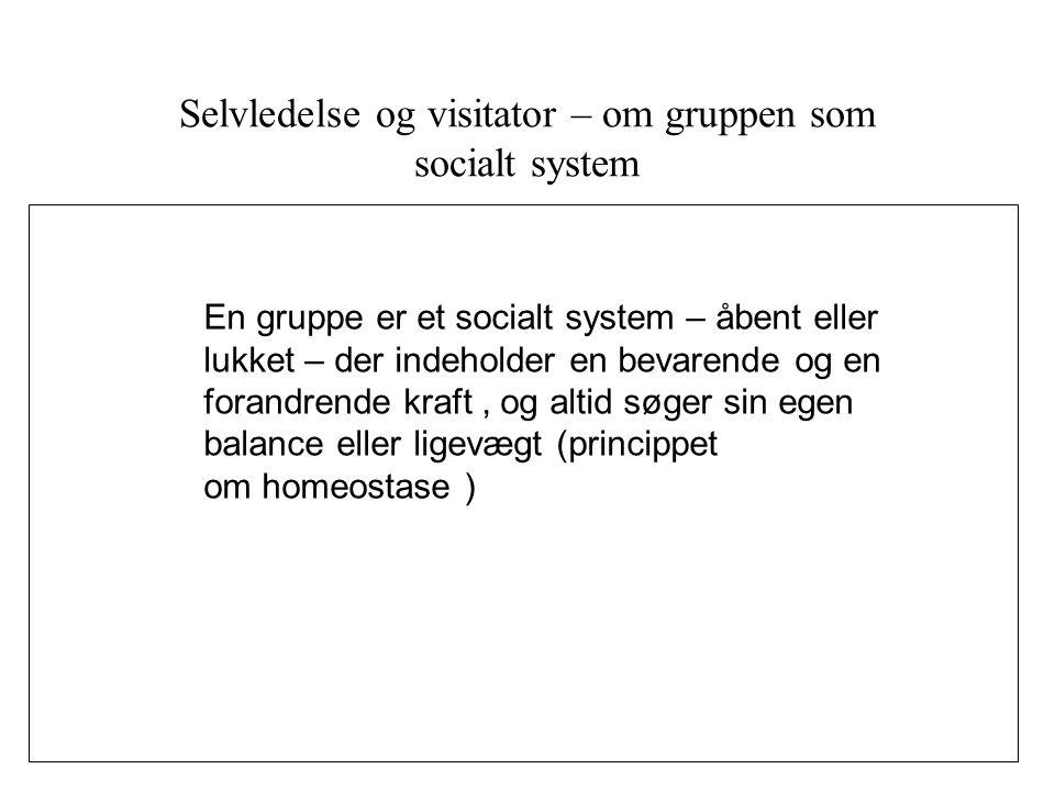 Selvledelse og visitator – om gruppen som socialt system