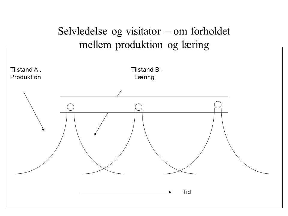 Selvledelse og visitator – om forholdet mellem produktion og læring