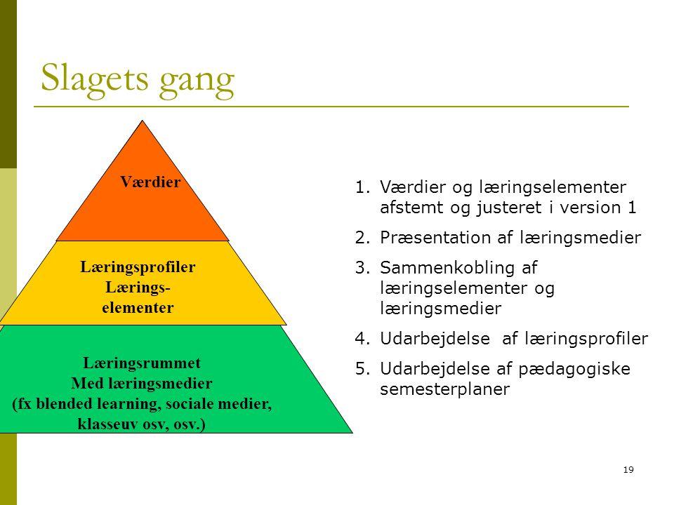 (fx blended learning, sociale medier, klasseuv osv, osv.)