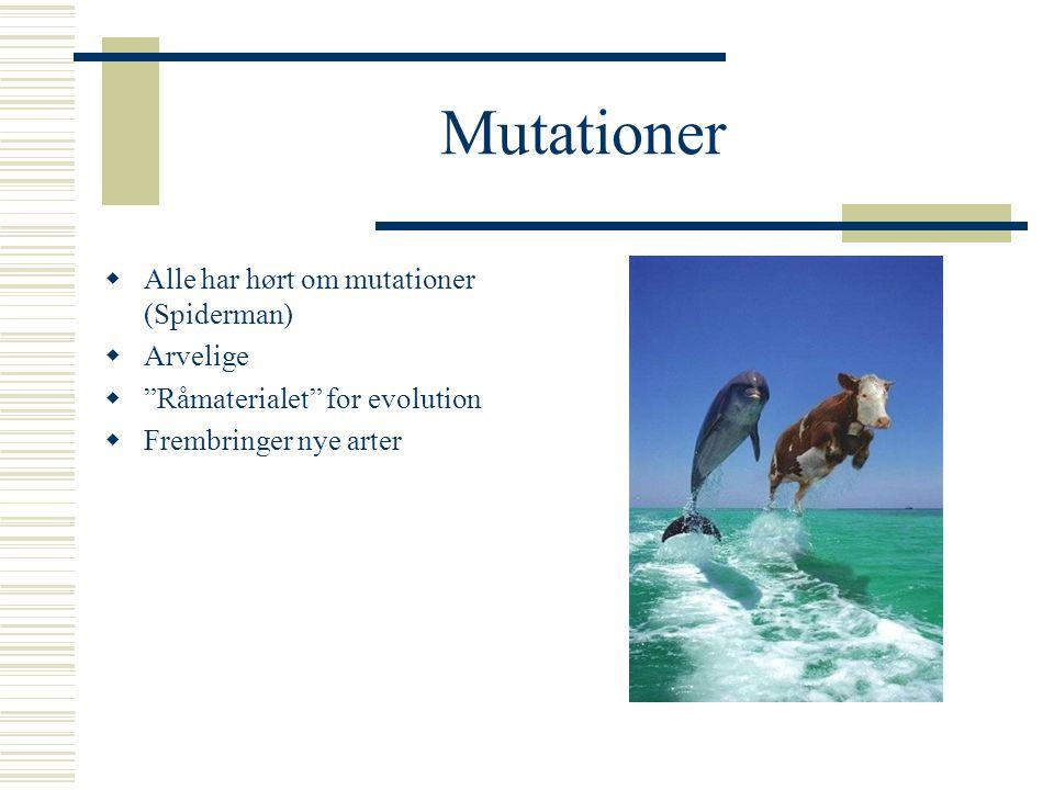 Mutationer Alle har hørt om mutationer (Spiderman) Arvelige