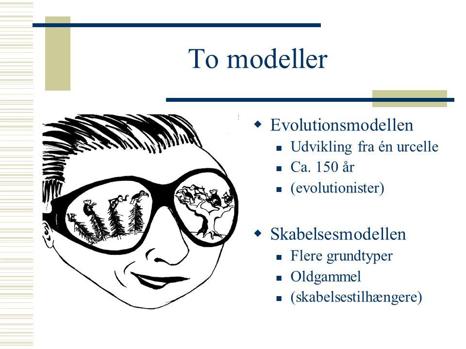 To modeller Evolutionsmodellen Skabelsesmodellen