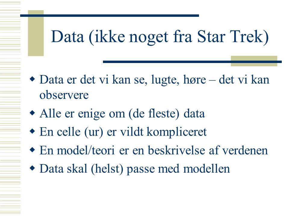 Data (ikke noget fra Star Trek)