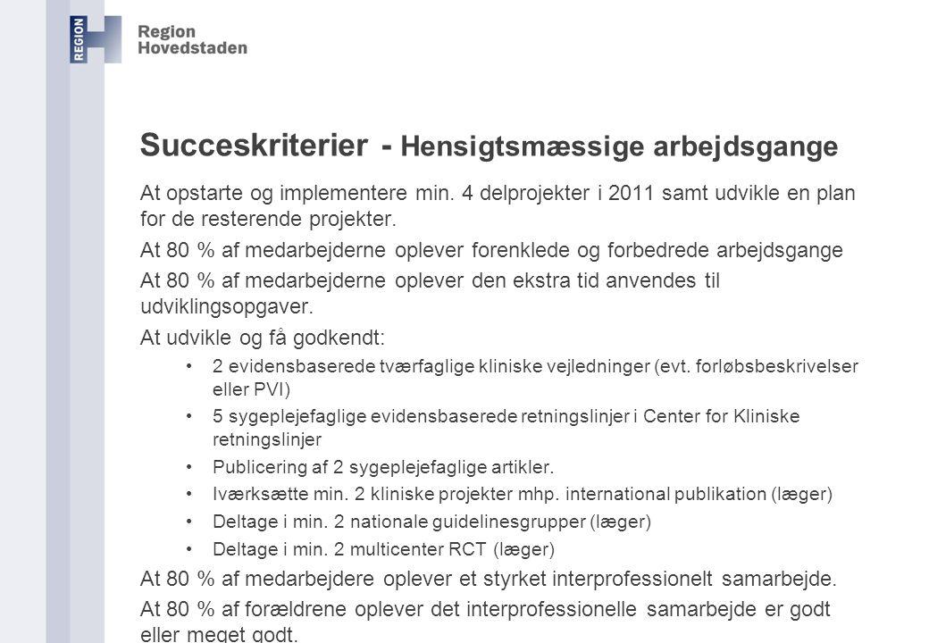 Succeskriterier - Hensigtsmæssige arbejdsgange